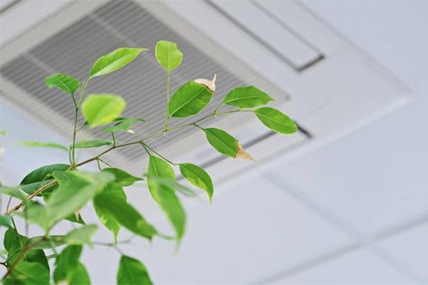 vvs aalborg ventilation udsugning